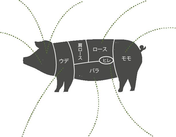 豚イメージ